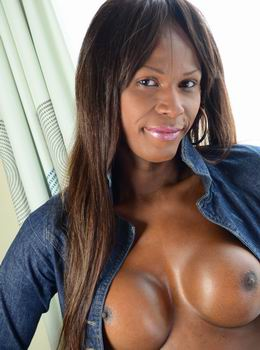 Black Shemale Hardcore:The best Black transsexual models in only hardcore action! - 1